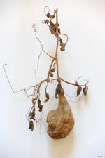 2019 Group Show: James Pitts – Dried Gourd, 2018
