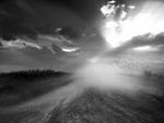 Angela Bacon-Kidwell: Drifting Grey, 2013