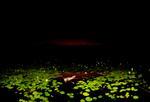 Bear Kirkpatrick: Inside Isaiah God Saw The Worldsheet Burning, 2009