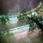 Becky Ramotowski: Looking UP, 2010