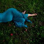 Cig Harvey: Fallen Apples, 2011