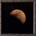 Cosmos Exhibition: Kate Breakey – Eclipse February 20, 2008