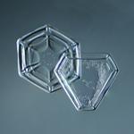 Douglas Levere: Snowflake 2014.02.09.005