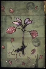 James Hajicek & Carol Panaro-Smith: Earth Vegetation Composite/04-18, 2004
