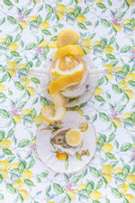 JP Terlizzi: Gracie Lemonata with Lemon, 2019