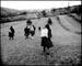 Kathleen Laraia McLaughlin: Home from Market, Fields of Sarbi, Romania, 2000