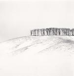 Michael Kenna: Hilltop Trees, Study 4, Teshikaga, Hokkaido, Japan, 2016