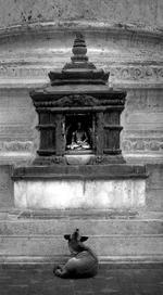 Pentti Sammallahti: Kathmandu, Nepal, 1994