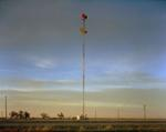 Steve Fitch: Near Umbarger, Texas, March 11, 2005?
