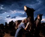 Tom Chambers: Horse Talk