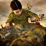 Tom Chambers: Hidden Aviary, 2017