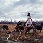 Tom Chambers: With The Pack, 2006