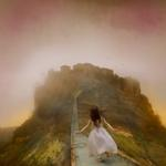 Tom Chambers: Late for Dinner