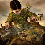 Tom Chambers: Hidden Aviary